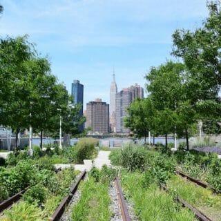 A Tour of Long Island City, NYC's Fastest Growing Neighbourhood