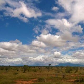 A Stunning Kenyan Safari, Part I: Tsavo East