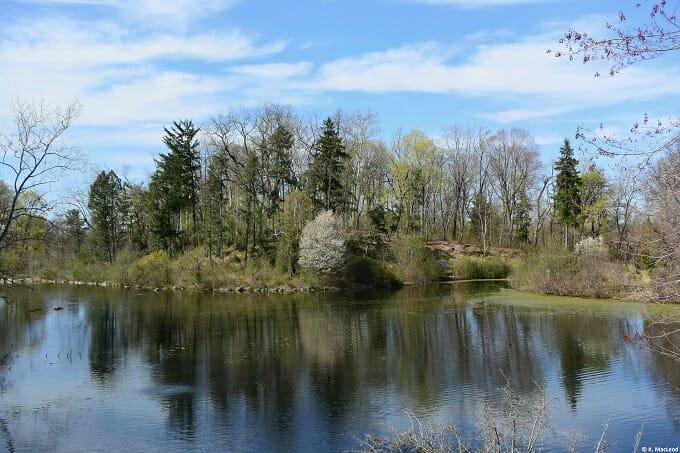 Great Falls Lake, Duke Farms