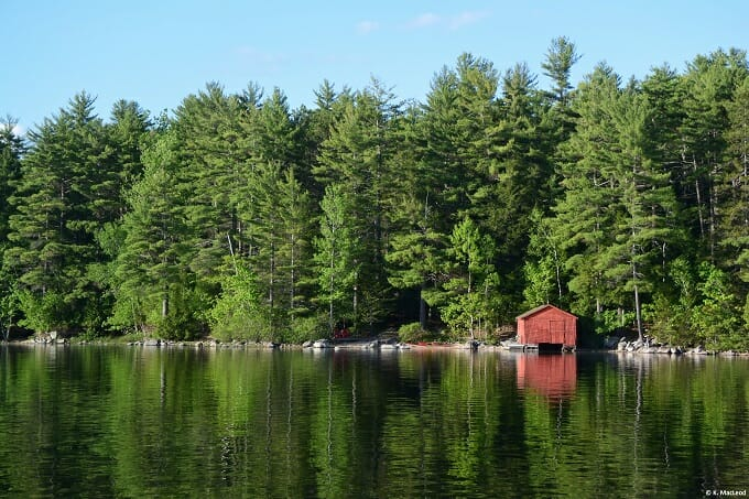 An off-the-grid red cabin in the woods, Grand Lake Stream