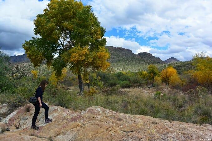Hiking in Sabino Canyon