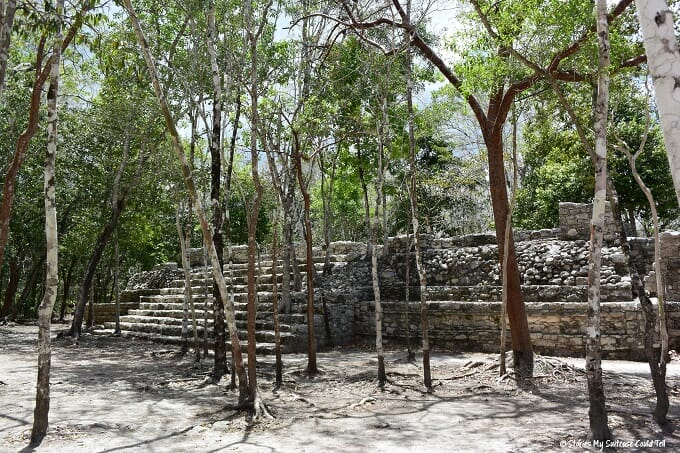 Mayan ruins in the Coba jungle