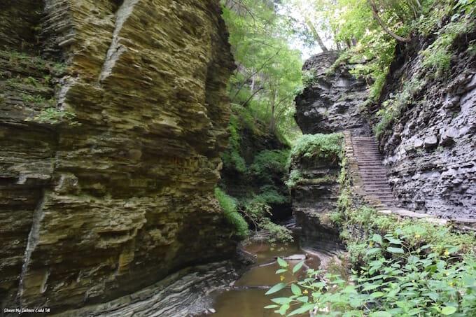 Path in Watkins Glen State Park
