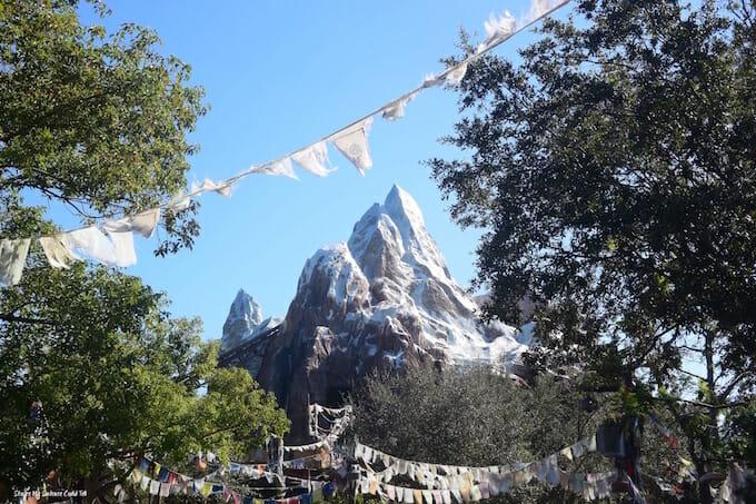 Everest Animal Kingdom Walt Disney World